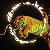 Цирки в Комсомольске